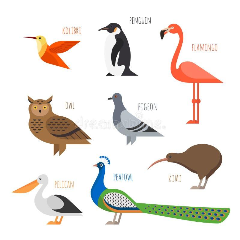 Insieme delle icone variopinte dell'uccello Gufo, colibrì e piccione illustrazione di stock