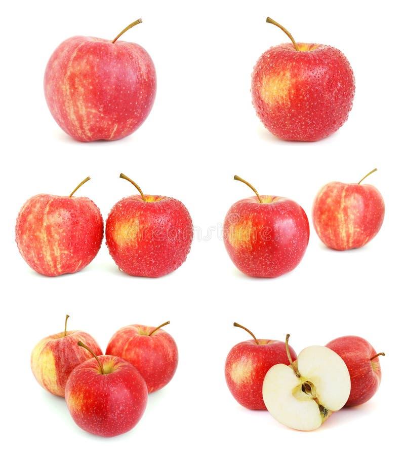 Insieme delle immagini con le mele rosse immagine stock