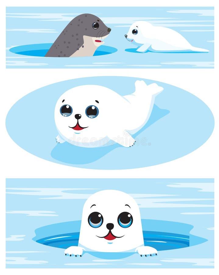 Insieme delle immagini dei cuccioli di foca dell'arpa royalty illustrazione gratis