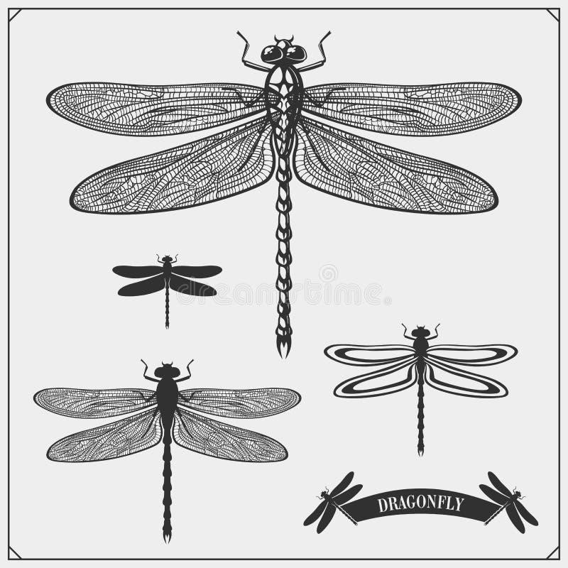 Insieme delle libellule Vettore royalty illustrazione gratis
