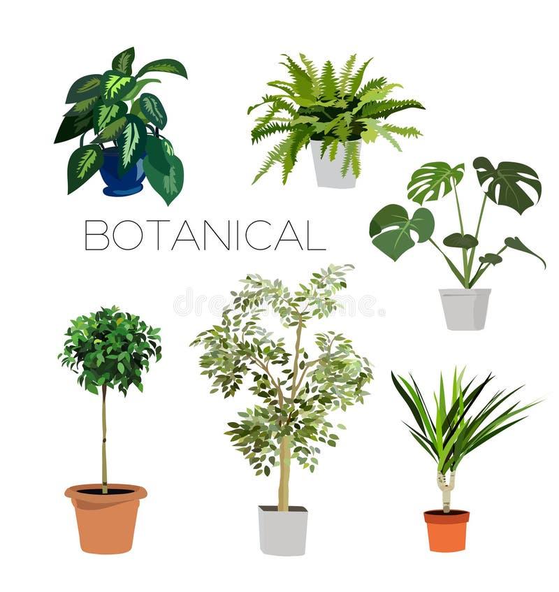 Insieme delle piante royalty illustrazione gratis