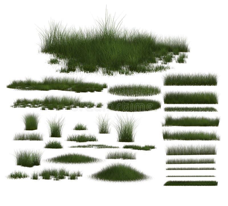 Insieme delle progettazioni dell'erba verde fotografia stock