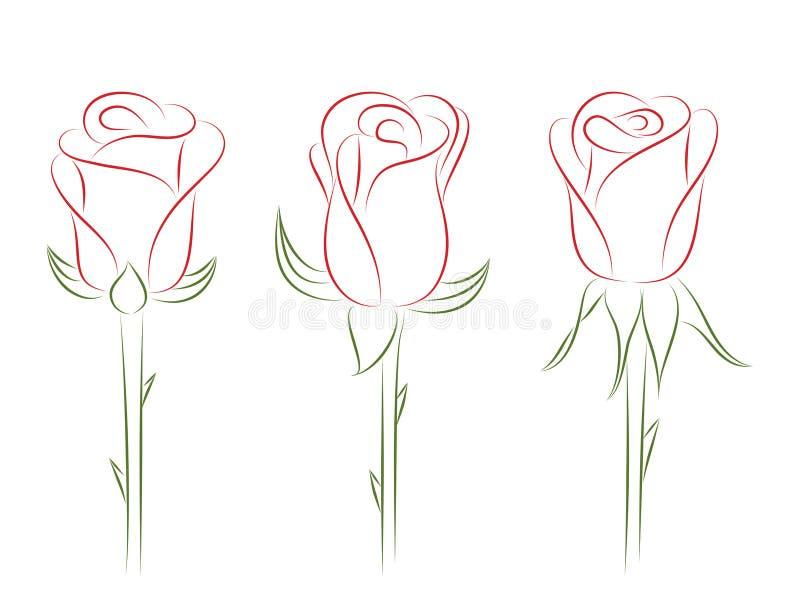 Insieme delle rose. illustrazione vettoriale
