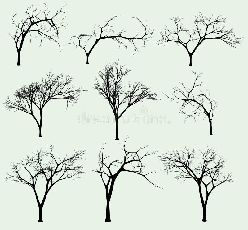 Insieme delle siluette degli alberi illustrazione di stock