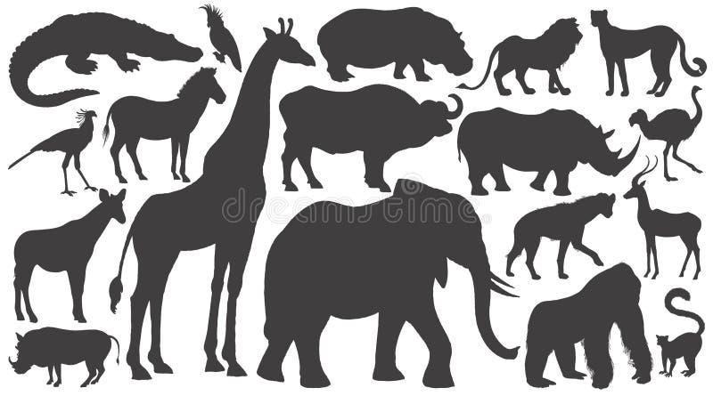 Insieme delle siluette degli animali africani illustrazione vettoriale
