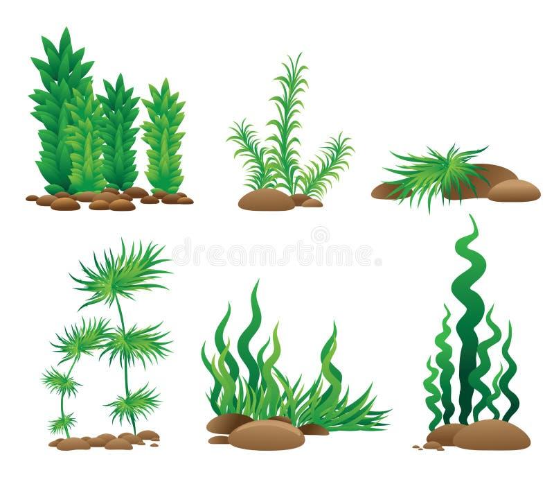Insieme delle strutture dell'erba illustrazione di stock