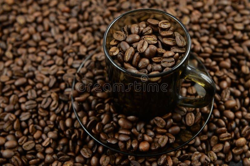 Insieme di caffè riempito di chicchi di caffè fotografie stock