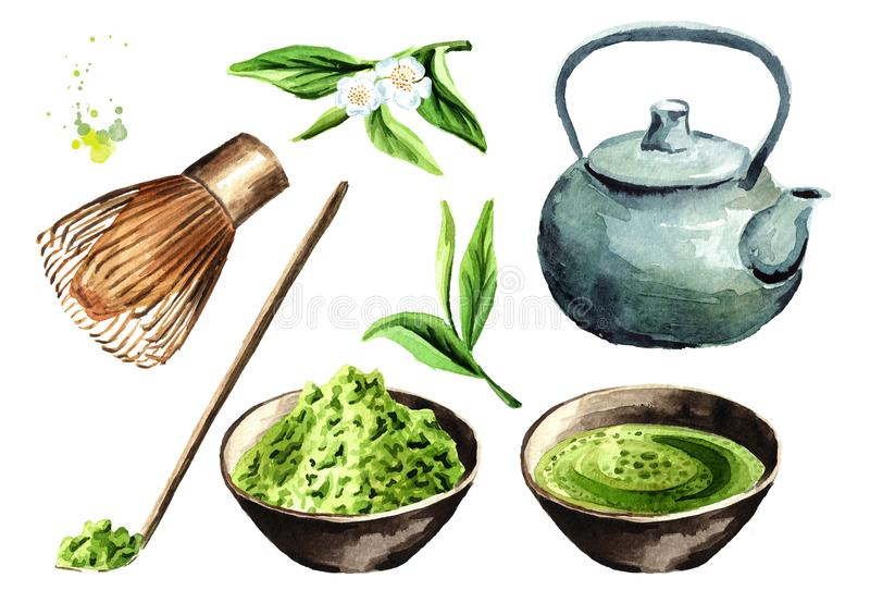 Insieme di cerimonia di tè La polvere di Matcha, la teiera, tazza del matcha verde organico tradizionale, bambù sbatte, cucchiaio illustrazione vettoriale