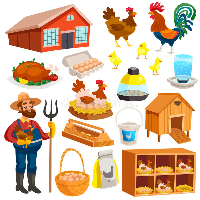 Insieme di elementi dell'azienda avicola illustrazione di stock
