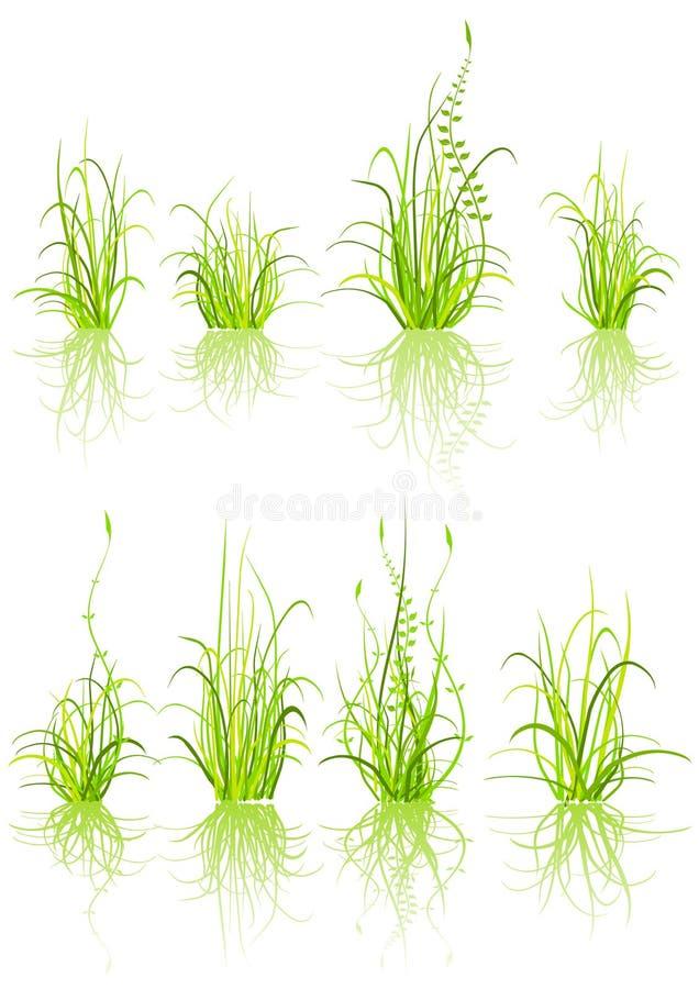 Insieme di erba illustrazione di stock