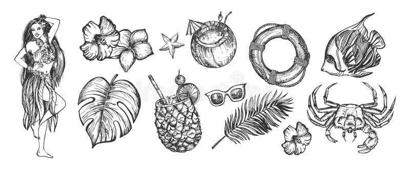 Insieme di estate del partito della spiaggia di Havaian royalty illustrazione gratis