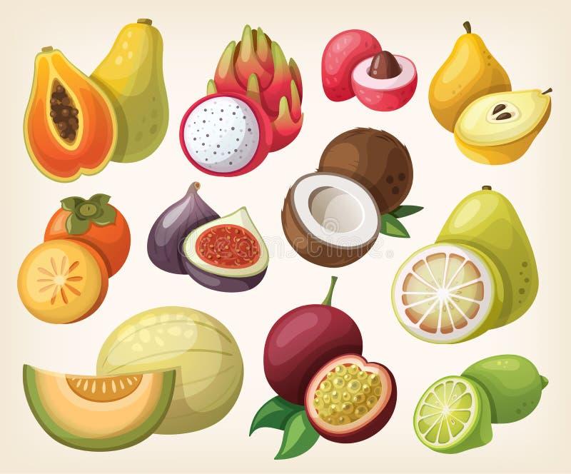 Insieme di frutta esotica royalty illustrazione gratis