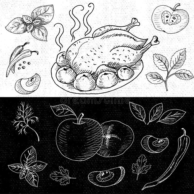 Insieme di gesso attinto un alimento della lavagna, spezie illustrazione vettoriale