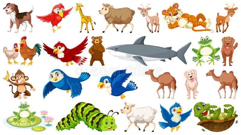 Insieme di molti animali selvatici royalty illustrazione gratis