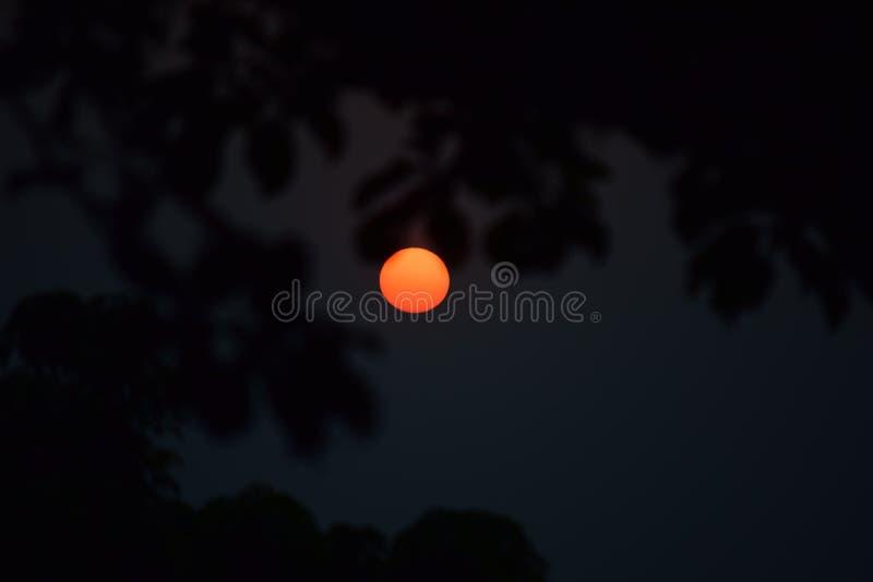 Insieme di Sun immagini stock libere da diritti
