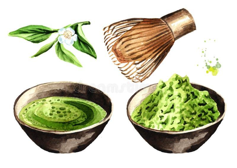 Insieme di tè verde organico di Matcha Illustrazione disegnata a mano dell'acquerello, isolata su fondo bianco illustrazione di stock