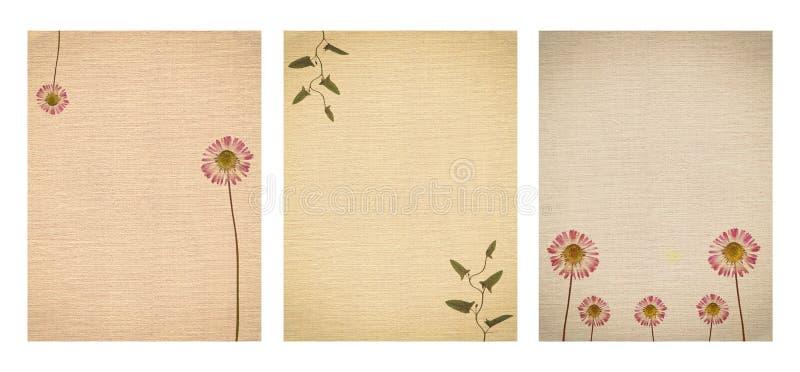Insieme di varia vecchia struttura di carta d'annata con le piante asciutte ed il fiore isolati immagini stock