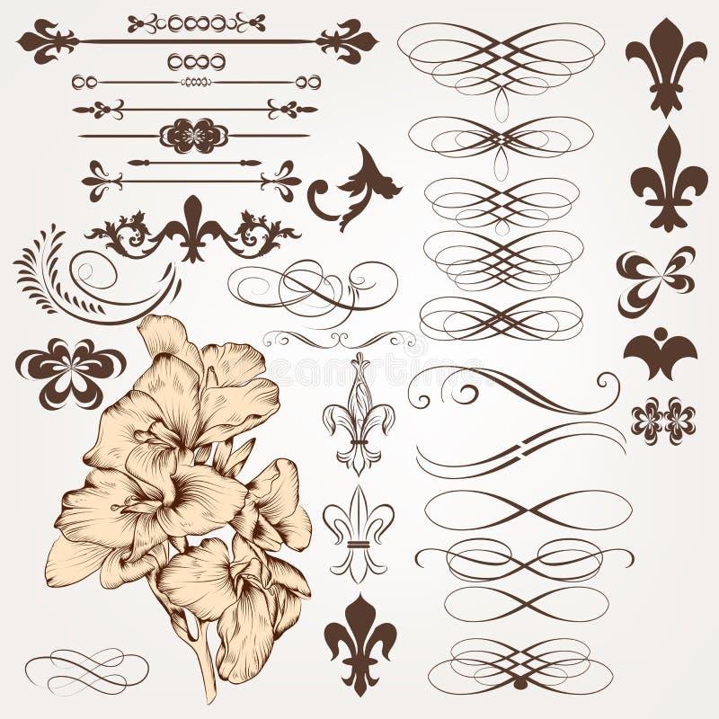 Insieme di vettore degli elementi calligrafici d'annata di progettazione e del deco della pagina illustrazione di stock