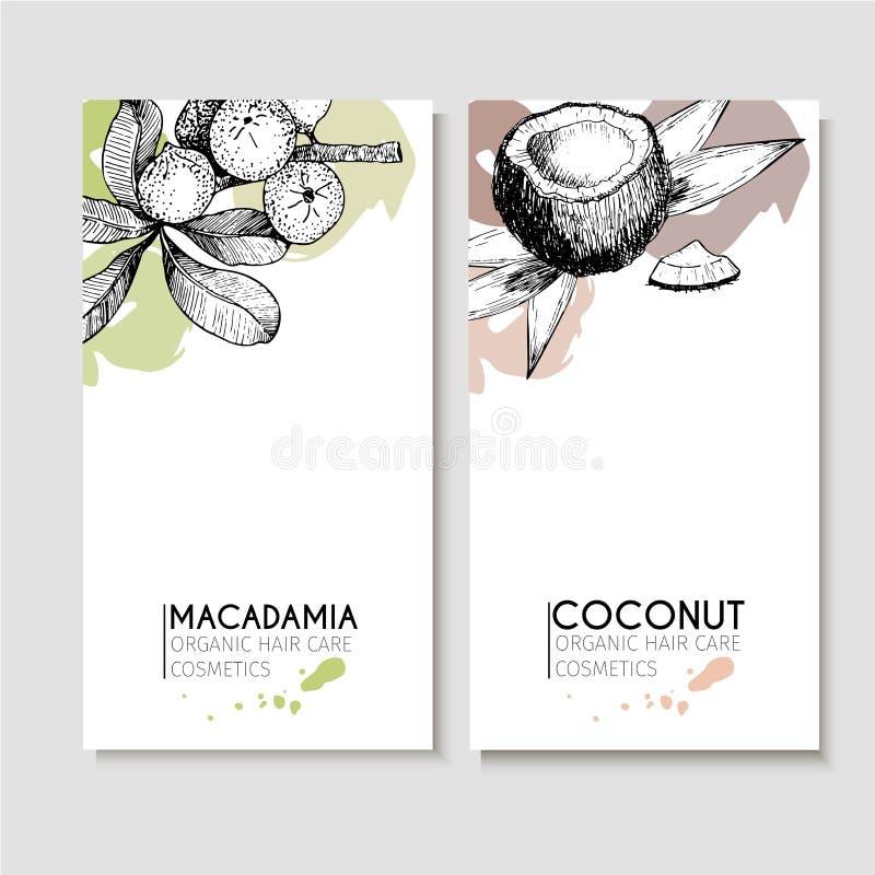 Insieme di vettore degli ingredienti di cura di capelli Elementi disegnati a mano organici Alette di filatoio con la noce di maca illustrazione vettoriale