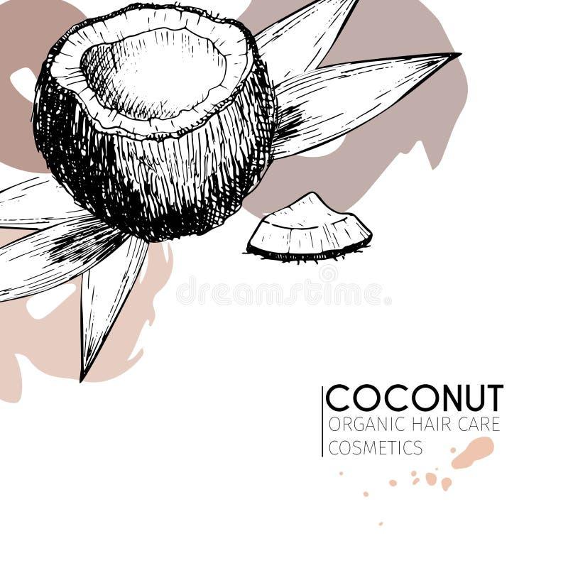 Insieme di vettore degli ingredienti di cura di capelli Elementi disegnati a mano organici Noce di cocco e foglie illustrazione vettoriale