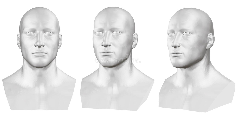 Insieme di vettore dei busti maschii isolati dei manichini su fondo bianco 3d Busto maschio dai lati differenti Vettore illustrazione di stock