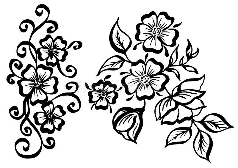 Insieme di vettore dei fiori d'annata dipinti a mano con i riccioli isolati su fondo bianco illustrazione di stock