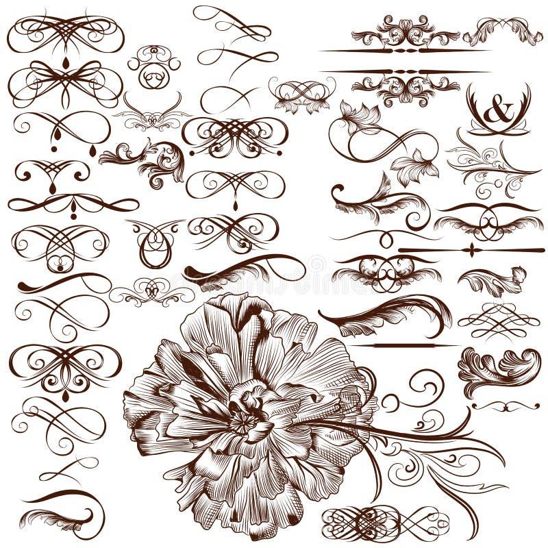 Insieme di vettore dei flourishes calligrafici e degli ornamenti illustrazione vettoriale