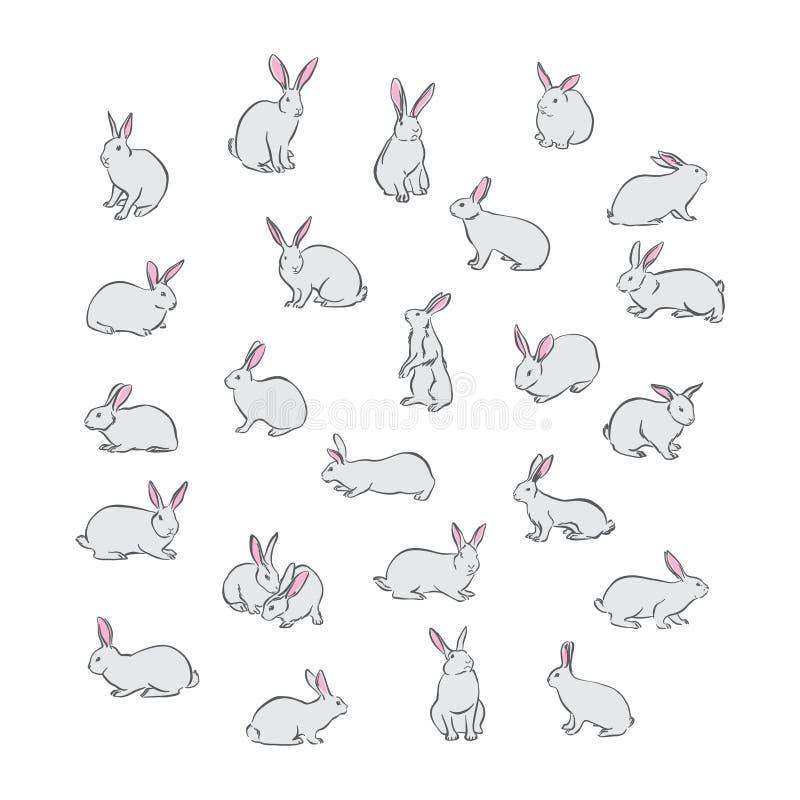 Insieme di vettore dell'animale domestico del coniglio di coniglietto Caratteri differenti di giorno di Pasqua felice disegnato a illustrazione di stock