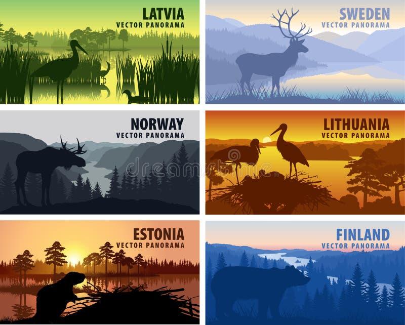 Insieme di vettore della Scandinavia e dei paesi baltici illustrazione vettoriale