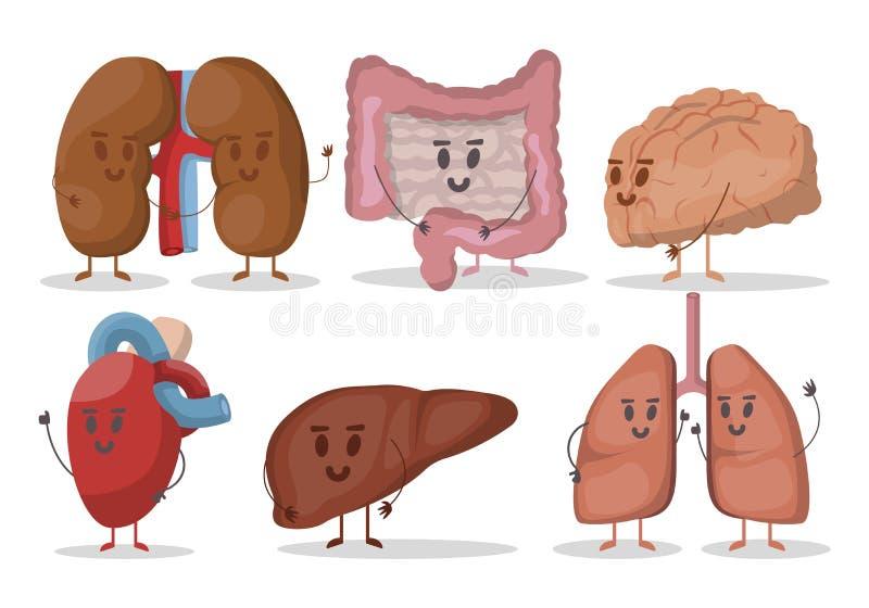 Insieme di vettore delle illustrazioni umane degli organi interni Cuore, polmoni, reni, fegato, cervello, stomaco Caratteri sorri royalty illustrazione gratis