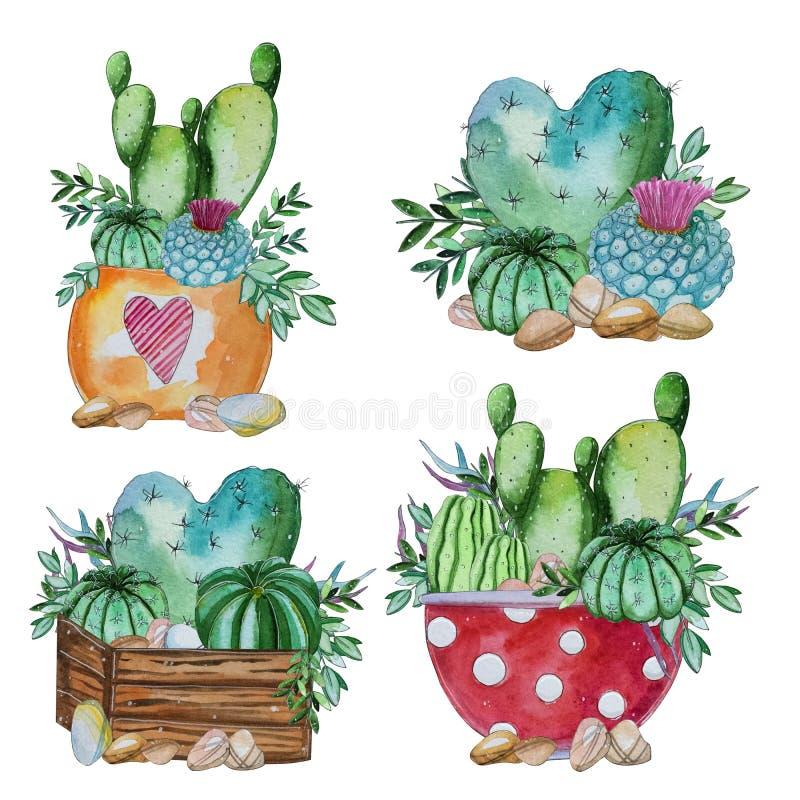 Insieme dipinto a mano dell'acquerello del cactus e della pianta succulente illustrazione di stock