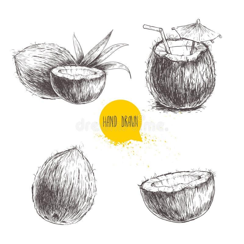 Insieme disegnato a mano della noce di cocco Cocktail su fondo bianco illustrazione di stock
