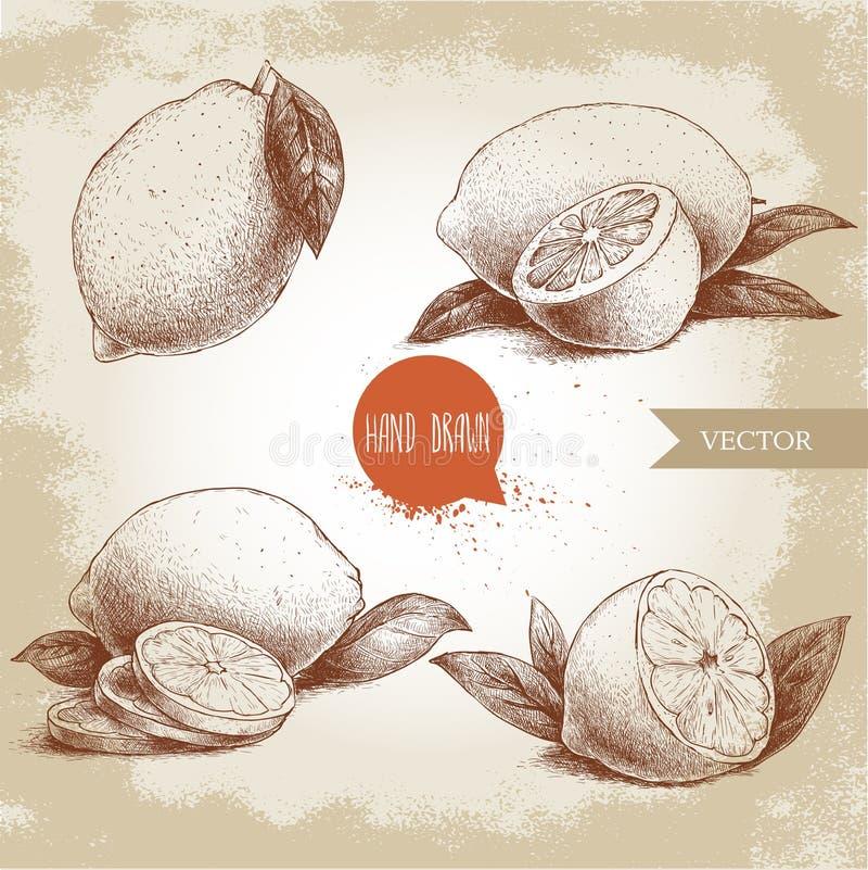 Insieme disegnato a mano di stile di schizzo della frutta del limone con le foglie ed il limone affettato illustrazione di stock