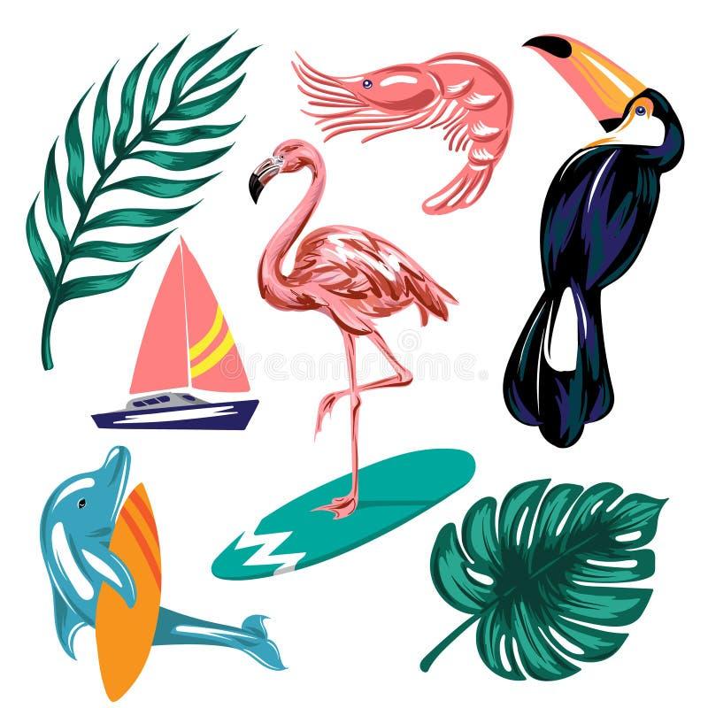 Insieme disegnato a mano di vettore delle illustrazioni tropicali illustrazione vettoriale