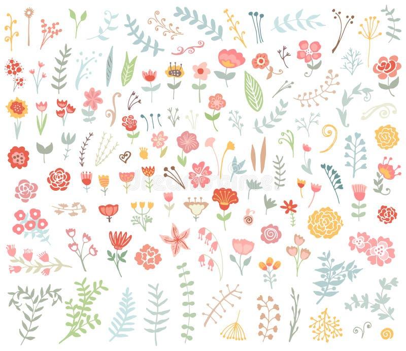 Insieme disegnato a mano floreale dell'annata illustrazione di stock