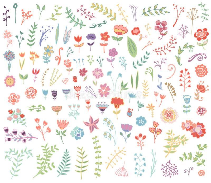 Insieme disegnato a mano floreale dell'annata illustrazione vettoriale
