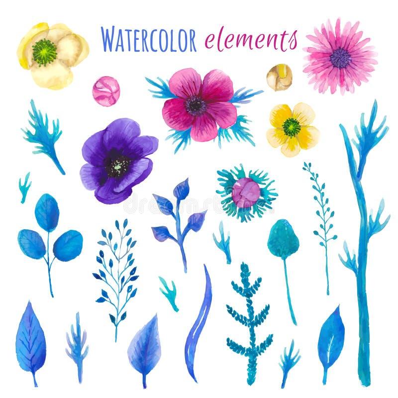 Download Insieme Floreale Del Fiore Dell'acquerello Illustrazione Vettoriale - Illustrazione di arte, petalo: 55359534