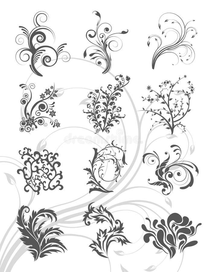 Insieme floreale dell'ornamento del grafico di vettore illustrazione di stock