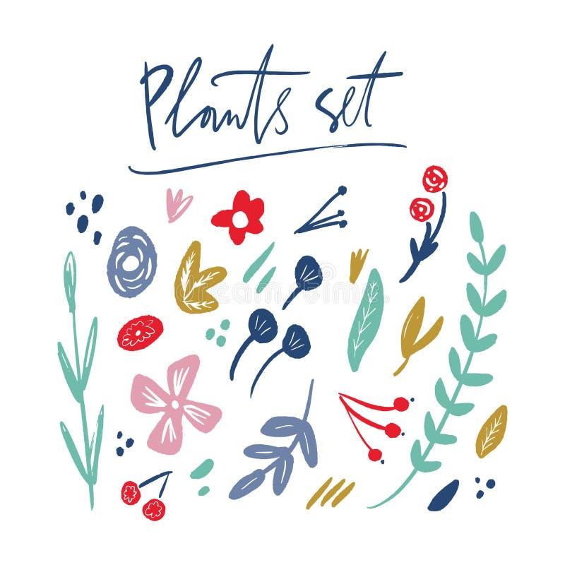 Insieme floreale di vettore dei fiori, delle foglie e dei rami Pacco pastello di estate e della primavera royalty illustrazione gratis