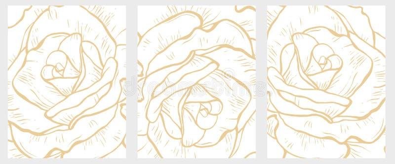 Insieme floreale disegnato a mano delicato delle illustrazioni di vettore Dettaglio astratto delle rose del grande oro royalty illustrazione gratis
