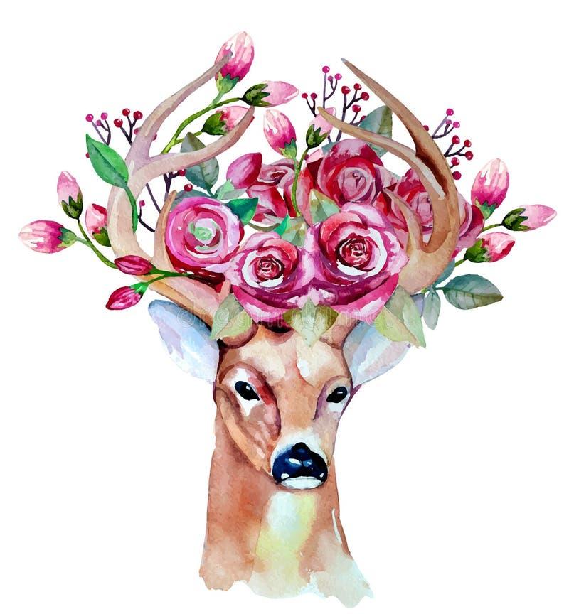 Insieme floreale disegnato a mano dell'acquerello di vettore con i cervi illustrazione di stock