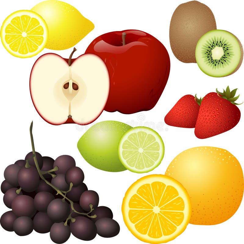 Insieme isolato della frutta illustrazione vettoriale