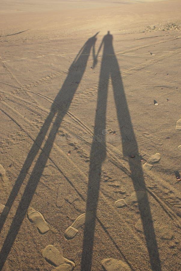 Insieme nel deserto fotografia stock