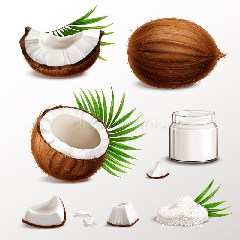 Insieme realistico della noce di cocco illustrazione di stock