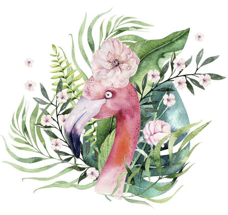 Insieme tropicale degli uccelli dell'acquerello disegnato a mano del fenicottero con le foglie Illustrazioni rosa esotiche dell'u royalty illustrazione gratis