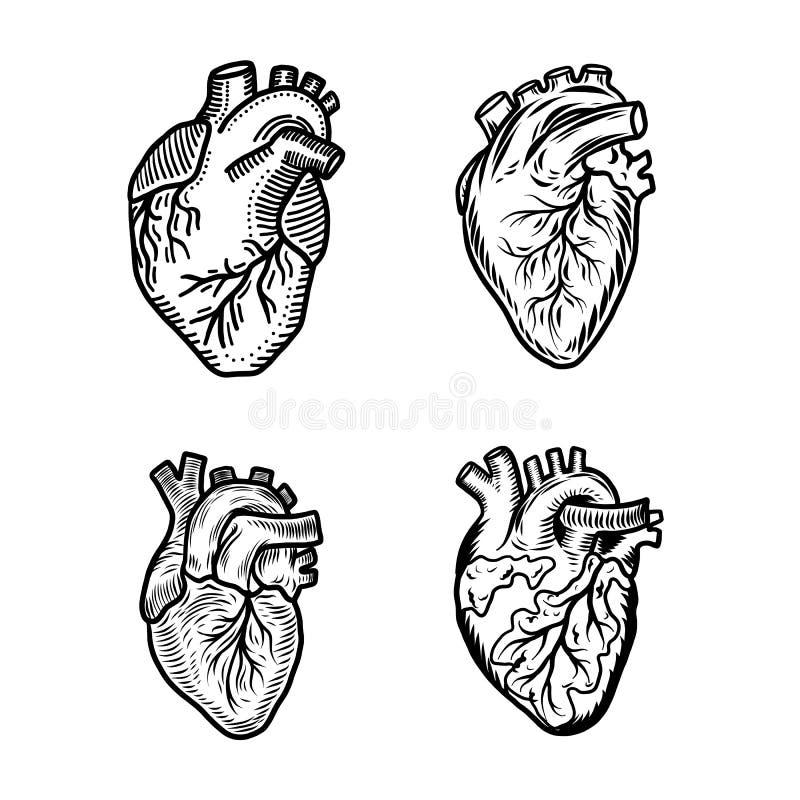 Insieme umano dell'icona del cuore, stile disegnato a mano royalty illustrazione gratis
