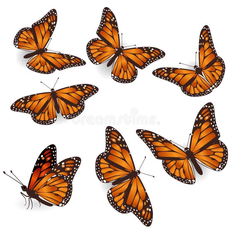 Insieme volante tropicale arancio dell'illustrazione delle farfalle di vettore royalty illustrazione gratis