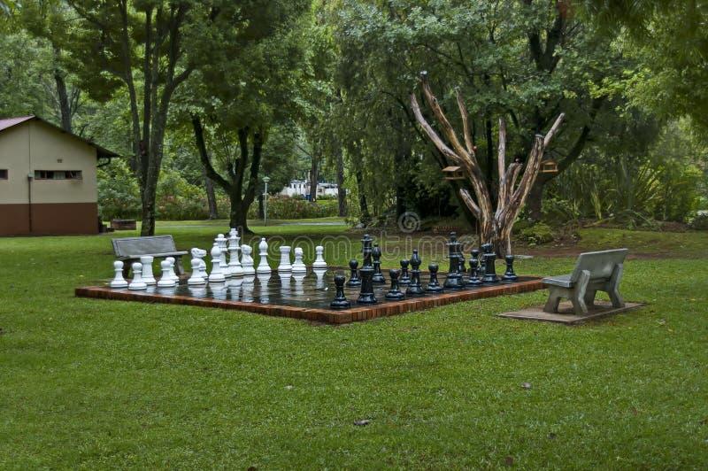 Insiemi di scacchi del giardino con le gocce di acqua dopo la notte piovosa in Sabie immagini stock