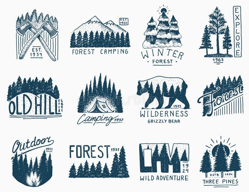 Insignes de camping, forêt conifére de montagnes et logo en bois Nature sauvage paysages avec des pins et des collines emblème illustration libre de droits