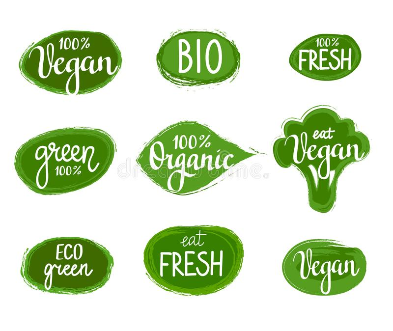 Insignes organiques de vegan de nature de vert d'eco de lettrage de vecteur réglés illustration libre de droits
